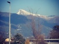 Viareggio-carnevale-001